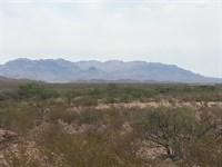 20 Acres Only $138/Mo. $0 Down : Sierra Blanca : Hudspeth County : Texas