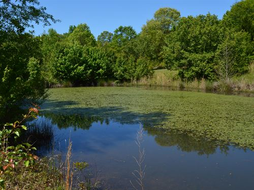 5.01 Acres In Inman With A Pond : Inman : Spartanburg County : South Carolina