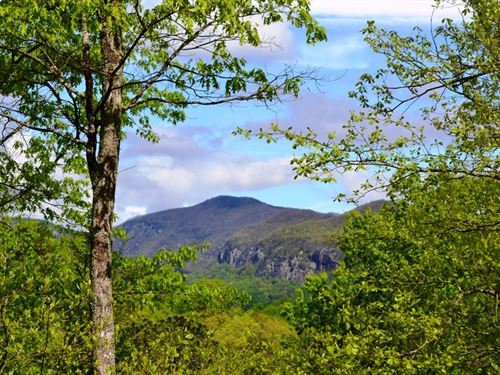 Lake Lure Lot 17 : Lake Lure : Rutherford County : North Carolina
