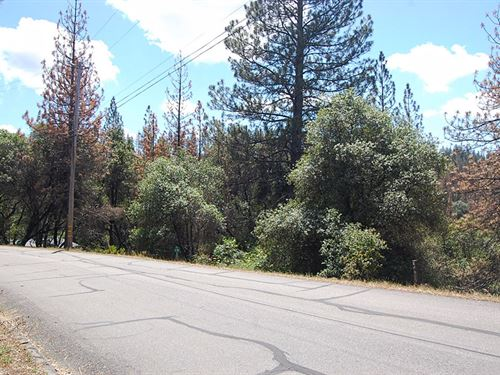 Great Lot In Gated Community : Groveland : Tuolumne County : California