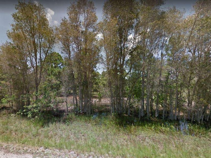 .23 Acres In Lehigh Acres, FL : Lehigh Acres : Lee County : Florida