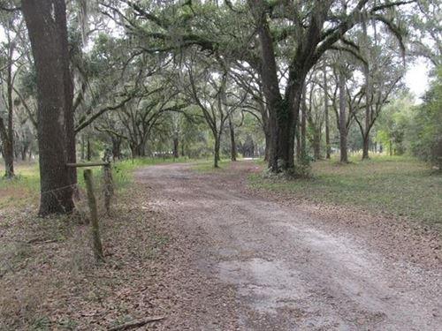 Scenic Croom Area Brooksville : Brooksville : Hernando County : Florida