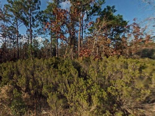 Levy County, Fl $12,000 : Williston : Levy County : Florida