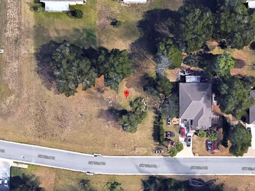 .27 Acres In Ocala, FL : Ocala : Marion County : Florida