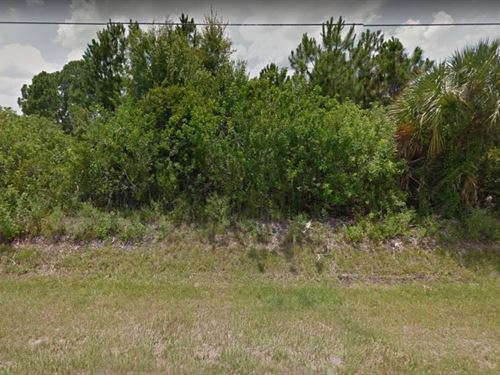 1.14 Acres In Naples, FL : Naples : Collier County : Florida