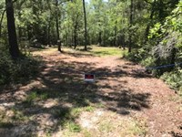 Huckleberry Rd : White Oak : Camden County : Georgia