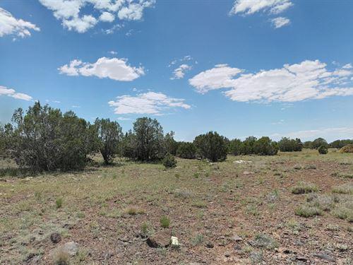 Coconino County, Az $4,200 : Ash Fork : Coconino County : Arizona