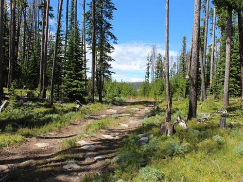 Private Hunting Retreat : Boulder : Jefferson County : Montana