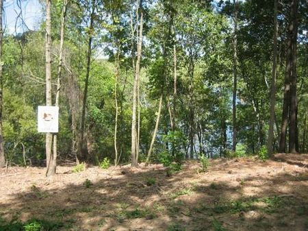 Breathtaking View Lot# 6 Bankhead : Quinton : Walker County : Alabama