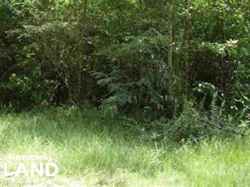 Developmental Lots Priced to Sell : Utica : Hinds County : Mississippi