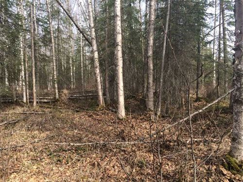 Beautiful, Large 5 Acre, Residenti : Wasilla : Matanuska-Susitna Borough : Alaska