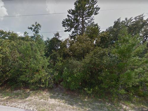 Marion County, Fl $20,000 : Ocala : Marion County : Florida