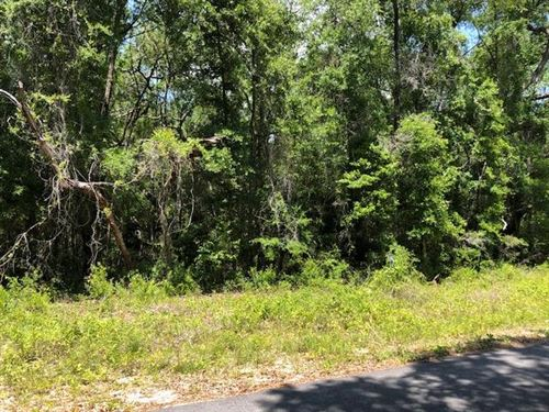 5 Acres 775718 : Old Town : Dixie County : Florida