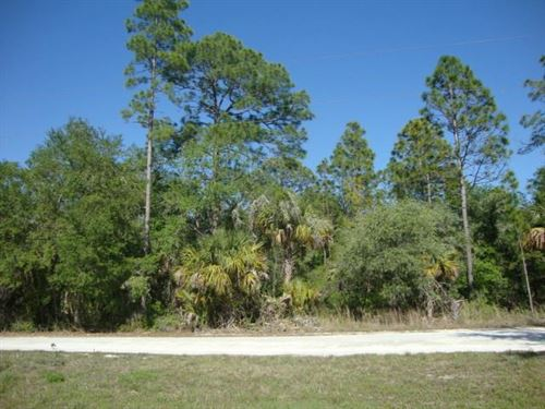 10 Acres 775625 : Cedar Key : Levy County : Florida