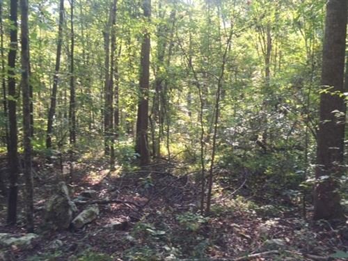 5.00+/-Acres Wooded Lot W/ Creek : Sequatchie : Marion County : Tennessee