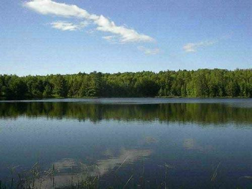 Estes Lake Splendor : Sidnaw : Baraga County : Michigan