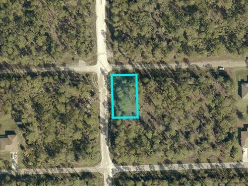 Lee County, Fl $25,000 Reduced : Lehigh Acres : Lee County : Florida