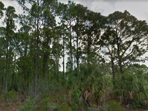 Brevard County, Fl $60,000 Neg : Palm Bay : Brevard County : Florida