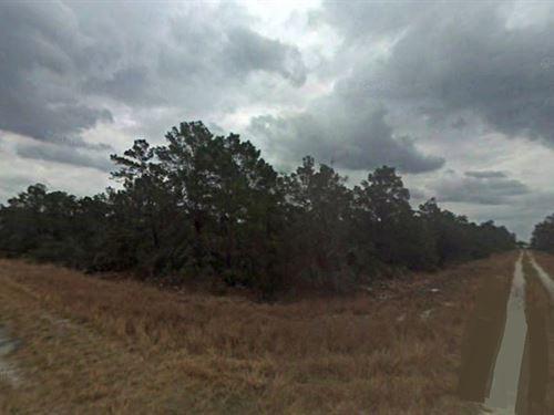 Highlands County, Fl $31,000 Neg : Sebring : Highlands County : Florida