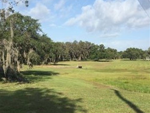 10 Ac Lakefront Cabin : Lake Wales : Polk County : Florida