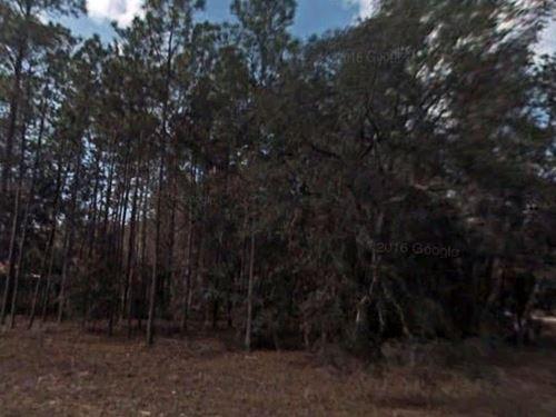 Citrus County, Fl $27,500 Neg : Citrus Springs : Citrus County : Florida