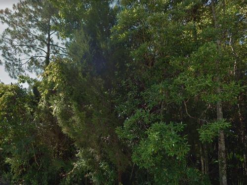 Citrus County, Fl $27,000 Neg : Homosassa : Citrus County : Florida