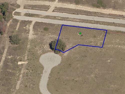 .46 Acres In Mascotte, FL : Mascotte : Lake County : Florida