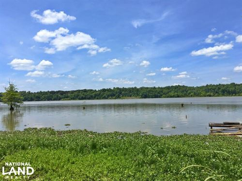 Sand Island River Lot 7 : Millers Ferry : Wilcox County : Alabama
