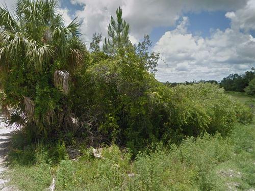 Brevard County, Fl $10,295 Neg : Mims : Brevard County : Florida