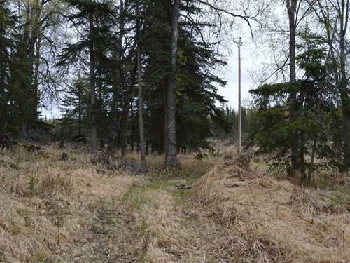 1.61 Acres of Land in Clam Gulch : Clam Gulch : Kenai Peninsula Borough : Alaska