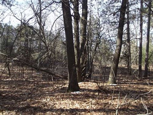 1.28 Acre Wooded Building Lot Rich : Lone Rock : Richland County : Wisconsin