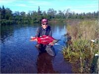 Fishing & Hunting 10 Acres 460Sf : Iliamna : Lake And Peninsula Borough : Alaska