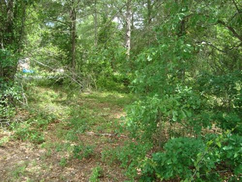1 Acre - Kershaw County, Sc : Camden : Kershaw County : South Carolina