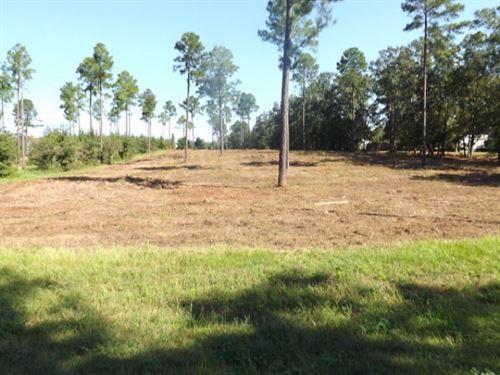 Nice Home Site : Headland : Henry County : Alabama