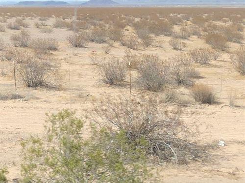 1.57 Acres In Sanders, AZ : Sanders : Apache County : Arizona