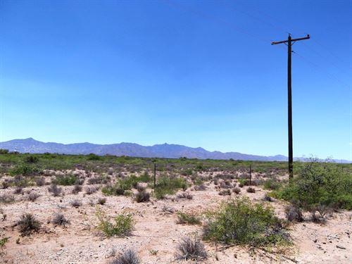 1.19 Acres In Sanders, AZ : Sanders : Apache County : Arizona