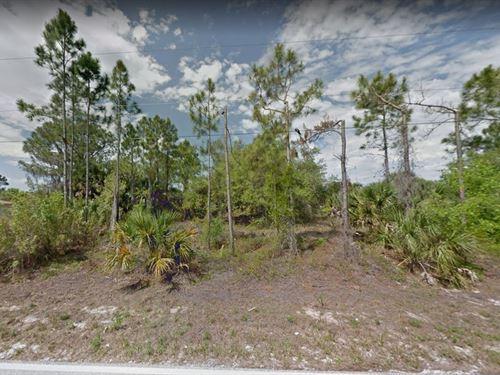 .26 Acres In Port Charlotte, FL : Port Charlotte : Charlotte County : Florida