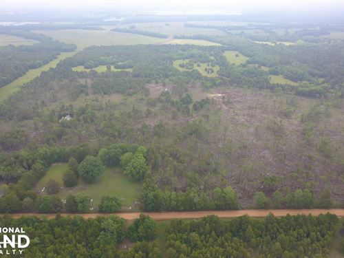 Allenville Road Homesite : Faunsdale : Hale County : Alabama