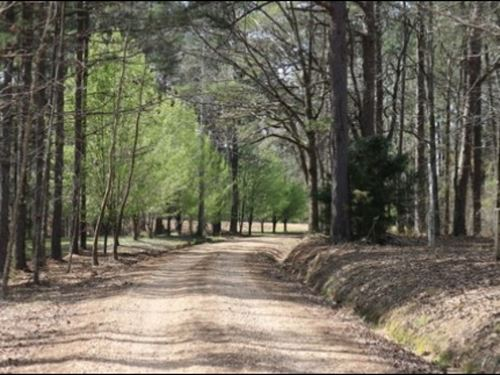 7.4 Acres In Neshoba County : Philadelphia : Neshoba County : Mississippi