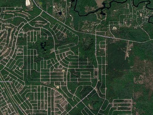 Citrus County, Fl $47,500 Neg. : Citrus Springs : Citrus County : Florida