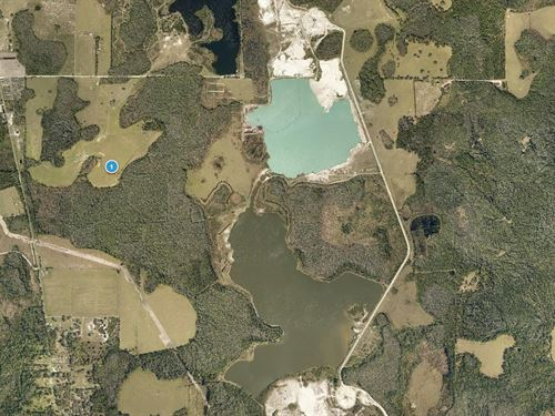 Lake County, Fl $6,000 Reduced : Clermont : Lake County : Florida