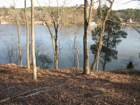 Gorgeous Taylors Ferry Lot #2 : Quinton : Walker County : Alabama
