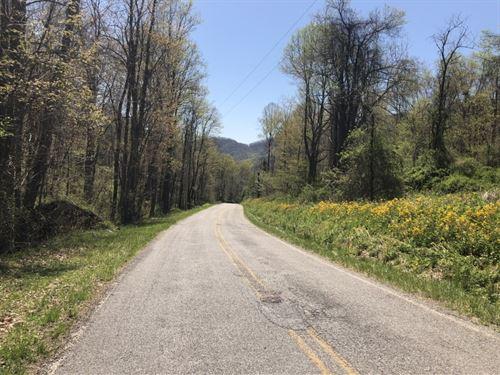 Streamside : Canton : Haywood County : North Carolina