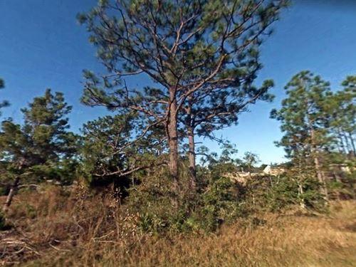 .45 Acres In Navarre, FL : Navarre : Santa Rosa County : Florida