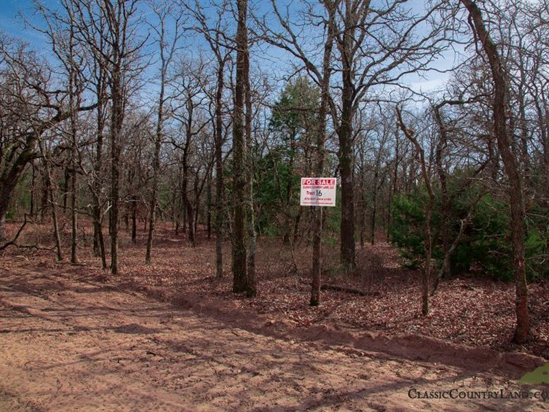 Legacy Ranch Beautiful Oklahoma 16 : Lot for Sale by Owner : Burneyville :  Love County : Oklahoma