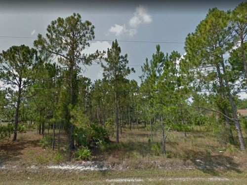 2.27 Acres In Naples, FL : Naples : Collier County : Florida