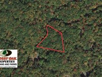 Reduced, 1.7 Acres of Residential : Burnsville : Yancey County : North Carolina