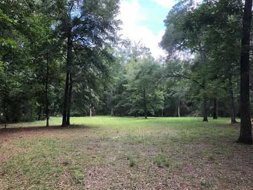 Reduced Beautiful 2.49 Acres 775881 : Chiefland : Levy County : Florida