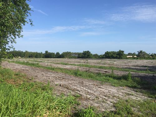 10 Acres Ranchette/Grove : Lake Wales : Polk County : Florida