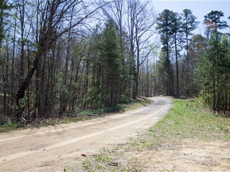Kentucky, Rock Castle County : Mt Vernon : Rockcastle County : Kentucky